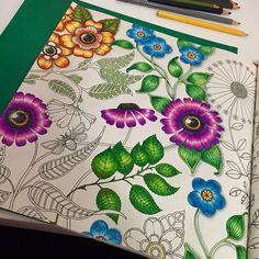 #arteterapia #antiestresse #adultcolouring #secretgarden #jardimsecreto #johannabasford #nossojardimsecreto #colouringbook