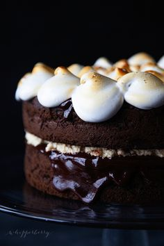S'more cake: http://www.stylemepretty.com/living/2014/09/04/15-ways-to-eat-a-smore/