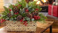 Basket packed with evergreens and pinecones.
