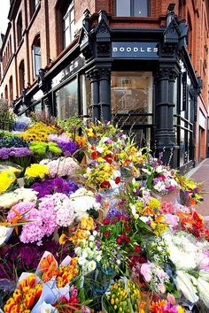 Flowers for sale, Dublin, Ireland- Dublin is the prettiest place ive ever been to. its like you are dreaming.
