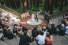 Love Story at the UC Botanical Garden in Berkeley California. Your Cal wedding could be in our amphitheater under towering redwoods.