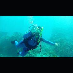 #instago #instalike #TagsForLikes #instalike #tweegram #followme #travel #TFLers #happy #webstagram #world #follow4follow #swag #like4like #peace #world #travel #italian #0711 #stuttgart #happy #w&t #beach #Paradies #party #fun #love #australia #backpackerlife #oz #greatbarrierreef #scubadive by liselotte0711 http://ift.tt/1UokkV2