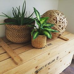 These thrift store finds would look good in any room of the house. cc: Instagrammer @chill_style Chill Style, Thrift Store Finds, Thrifting, Planter Pots, Rooms, Decorating, Instagram Posts, House, Home Decor