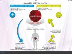 Glucotoxicidad