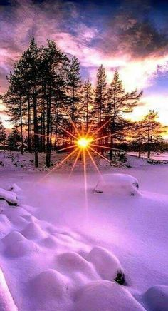 Psychic medium, love spells and accurate psychic online reading call/whatsapp – Beste Winterbilder Winter Sunset, Winter Scenery, Winter Light, Winter Trees, Winter Snow, Winter Pictures, Nature Pictures, Winter Images, Morning Pictures