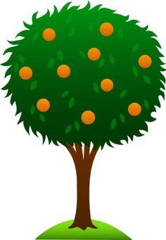 Three Orange Tree