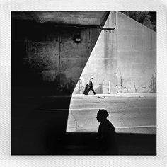 Matthew Wylie @m_mateos a dire wolf • 196...Instagram photo   Websta (Webstagram)