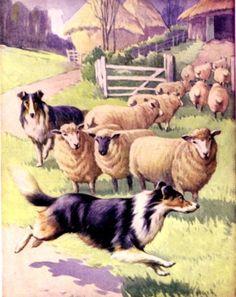 A.E. Kennedy illustration   eBay