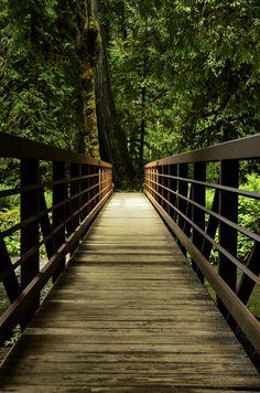 Bridge by Tamas Fekete on 500px