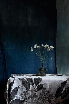 eve wilson photography