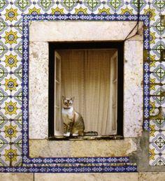 Lisboa, fachada de azulejos