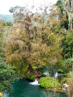 Un paseo junto al rio Tambaca