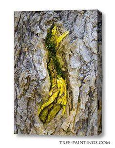Ashur - tree canvas