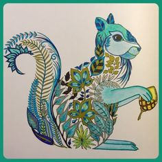 SQUIRREL Enchanted Forest /Johanna Basford - Google Search