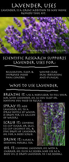 Beyond even the beauty -- the many uses of lavender to improve your health