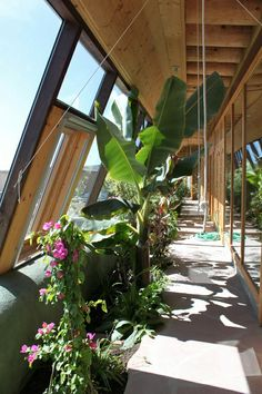An Earthship is a home that captures its own water, recycles its own sewage, and produces all its own electricity and food. It's meant to function completely independent of the power grid or any infrastructure at all. On this episode of The Good Stuff, Matt and Craig break down how Earthships work with help from Earthship Biotecture.