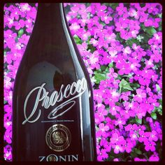 Day 16: Flower #sparkling #like #popular #iphone #instagram #wine #prosecco #challenge #photoadayapril #cute #flower #flowers #bestoftheday #photoaday #photooftheday #best #day16 - @zoninprosecco- #webstagram