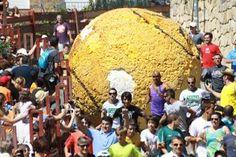 #Boloencierro 2012 Fiestas agosto #Mataelpino Encierros únicos en las fiestas de Verano de #Mataelpino. #Boloencierro. Una bola gigante de 120 Kg. de peso y 3 metros de diámetro recorre las calles del pueblo detrás de los mozos y mozas sustituyendo a los toros.