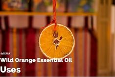 15 doTERRA Wild Orange Essential Oil Uses to give you some ideas for this versatile and wonderful oil. Side effects, precautions, and benefits covered.