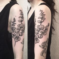 Eucalyptus Tattoo Related Keywords & Suggestions - Eucalyptus Tattoo ...