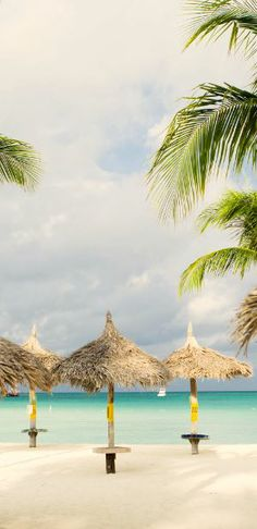 #Jetsetter Daily Moment of Zen: Aruba Marriott Resort & Casino