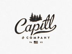 If you are looking for some old fashioned yet highly creative vintage logo designs stay here and have a look into these 22 Retro Logo Design Examples added to your inspiration. Cool Typography, Typography Design, Branding Design, Typography Inspiration, Graphic Design Inspiration, Design Ideas, Logo Design Examples, Vintage Logo Design, Vintage Lettering
