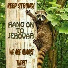 Keep Strong! Hang On To Jehovah We Are Almost There!