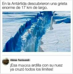 Funny Spanish Memes, Spanish Humor, Funny V, Funny Posts, Pewdiepie, Funny Images, Funny Pictures, Youtubers, Pinterest Memes