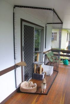 1000 Images About Catio On Pinterest Cat Enclosure