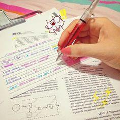 Revisão de ecologia + amorzinho pela minha caneta de seringa maravilinda (dá pra acreditar? Procurei elas por uns 3 anos e agora é minhaa, uhuhuhuhh! ❤️ - p.s: tem pra vender na @medcenter, gente!)