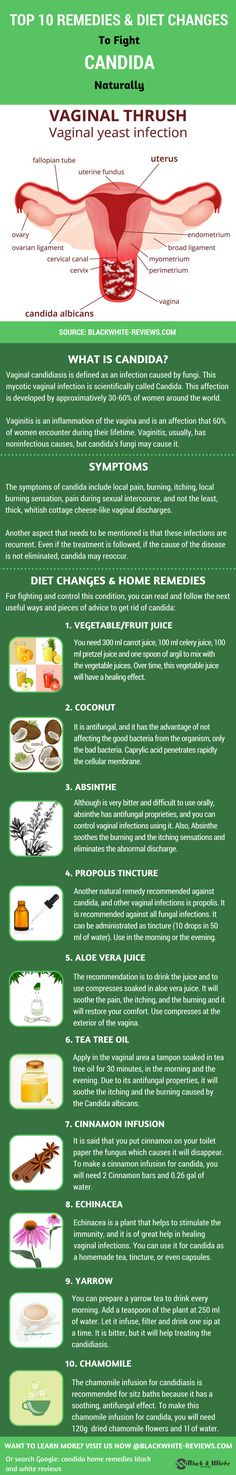 Candida symptoms, diet recipes, remedies and prevent its overgrowth. Learn how…
