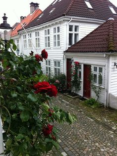 House in Bergen, Norway Trondheim, Stavanger, Beautiful Norway, Norway Travel, Scandinavian Living, Dream Vacations, Oslo, Beautiful Places, Places To Visit