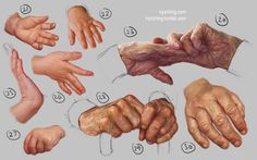Hand Study 3 - Young and Old by irysching.deviantart.com on @deviantART