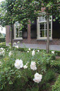 Dream Garden, Home And Garden, Landscape Design, Garden Design, Farmhouse Garden, Interior Garden, White Gardens, My Secret Garden, Exterior Paint