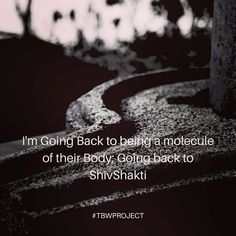 #Happy #mahashivratri #shivratri I'm going to #Being a #Molecule of their #Body ; going back to #Shiva #Shakti #shivshakti #Spiritual #quote #quotes #quotesdaily #quoteoftheday #Universe #Creator #Energy #Destroyer #Transformer #TBWProject #TheBrokenWingProject #adiyogi Cosmic Quotes, Shiv Ratri, Shiva Shakti, Quote Of The Day, Mahadev Quotes, The Creator, Spirituality, Universe, In This Moment