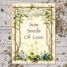 """Butterfly Garden Seed Favors """"Sow Seeds of Love"""" Set of 25 Individual Packets Garden Seeds, Planting Seeds, Planting Flowers, Flowering Plants, Baby Shower Favours For Guests, Bridal Shower Favors, Party Favors, Bridal Showers, Forget Me Not Seeds"""