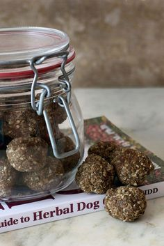 DIY Herbal Dog Treat Recipe