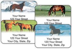 Click on the Horse Enthusiast Address Labels image to view the enlarged image