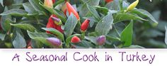 A Seasonal Cook in Turkey