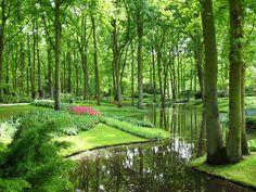 Colorful Keukenhof Gardens in Netherlands. #Trotting. #Travel