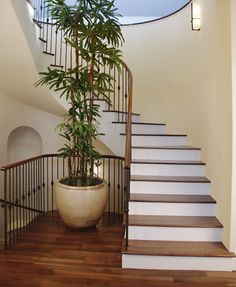 Elegant Candysdirt.com Wp Content Uploads Roller House Stairs.jpeg | Stairs In  Homes | Pinterest | House Stairs And House