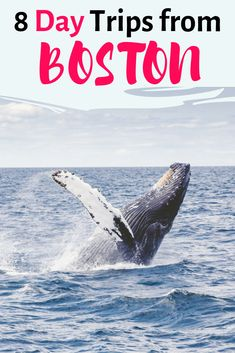 Looking for the best day trips from Boston? Here you have my Boston day trips guide, including Portsmouth, Provincetown, Newport, Martha's Vineyard & more! Travel Blog, Usa Travel Guide, Travel Usa, Travel Guides, Travel Tips, Travel Info, Travel Packing, Day Trips From Boston, New England Travel
