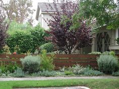 Get tips on designing attractive privacy fencing. Plus learn the right height for a privacy fence., Front yard fence, Fences and House fence design, Fences, Backyard fences and Fencing. Backyard Fences, Garden Fencing, Landscaping With Rocks, Front Yard Landscaping, Landscaping Ideas, Inexpensive Landscaping, Country Landscaping, Modern Fence, Modern Backyard