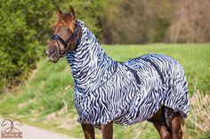 De QHP Eczeemdeken Zebra is een zeer comfortabele eczeemdeken. Met deze deken is uw paard optimaal beschermd tegen vliegen en muggen.  Maten (85/135tm165/215) Normaal €89,95 nu €69,95 www.limburgsruiterhuis.nl   Volg ons op: https://www.facebook.com/limburgruiterhuis