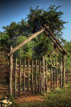 This cedar gate leads into the beautiful gardens at the Inn Above Onion Creek near Kyle in central Texas.