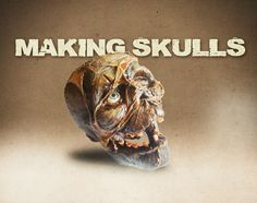 Want to make skulls like these? I made a tutorial! http://www.youtube.com/playlist?list=PLXY3kYmFFmKly2N75cCMrrLI3Qsp-_-Hq