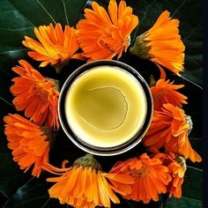 Have you met our Magical Skin Healing Balm? Free Plants, Natural Skin Care, Plant Based, The Balm, Healing, Herbs, Nature, Naturaleza, Herb