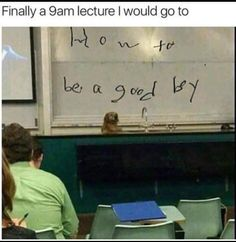 nice Dog Memes That Are Just Greatest Of All (31+ Pictures)