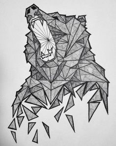 Geometric Bear Sketch                                                                                                                                                                                 Más