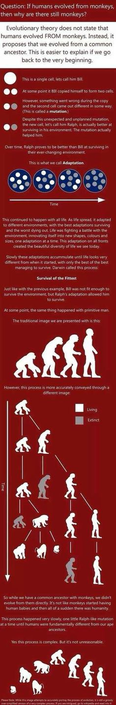 THE THEOLOGICAL THEORY OF REGRESSION. http://pinterest.com/pin/540924605213858551/  http://www.pinterest.com/pin/540924605215424308/